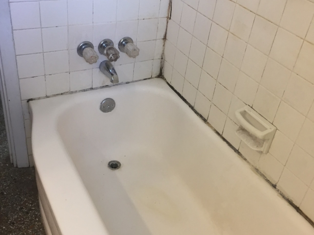 Lanier Renovation Bathtub