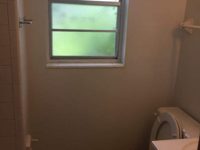 Lanier Renovation Bathroom